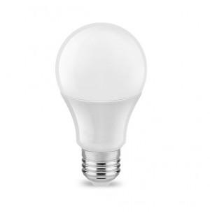 5W LED AMPUL